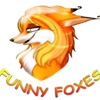 ☀☆☀☆☀☆FUNNY FOXES☀☆☀☆☀☆ГП БК УГМК
