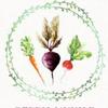 Мастер-классы по вегетарианской кухне