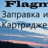 "Сервисный центр "" FLAGMAN"""