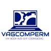 Активация функций VAG VW Skoda Audi Seat Пермь