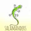 SALAMANDERS команда скалолазов