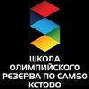 Sportivnaya-Shkola Olimpiyskogo-Rezrva-Po-Sambo