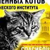 Ленинградские коты. Приют домашний Кот Учёный
