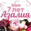 Азалия - доставка цветов в Костроме