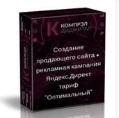 """Создание  продающего сайта +  рекламная кампания Яндекс.Директ  тариф  """"Оптимальный"""""""