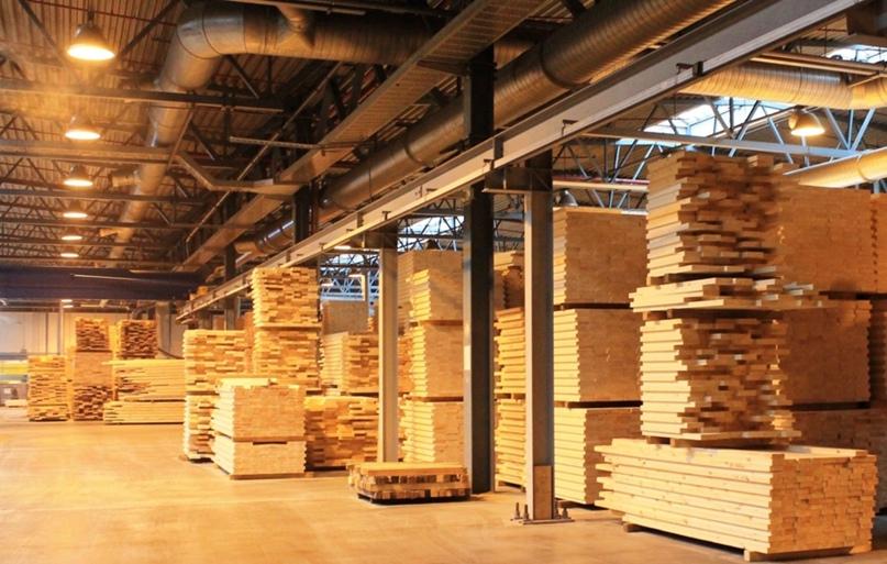 «Регуляторная гильотина» снимет лишние барьеры для ведения цивилизованного лесного бизнеса.