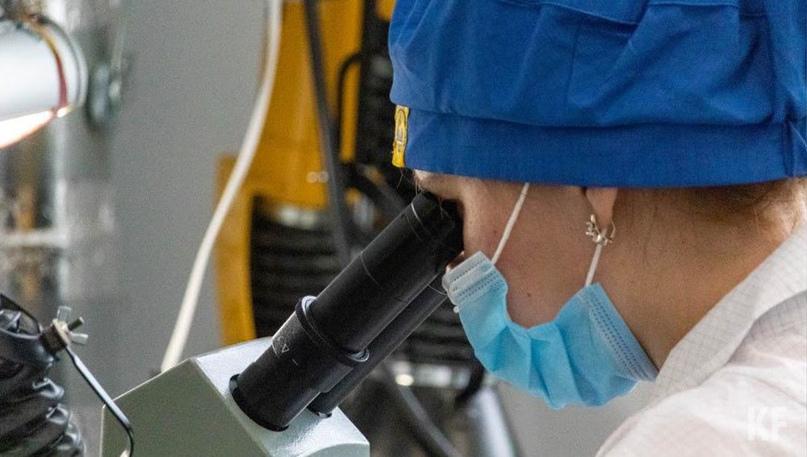 В России выявлен первый в мире случай заражения птичьим гриппом H5N8 у человека
