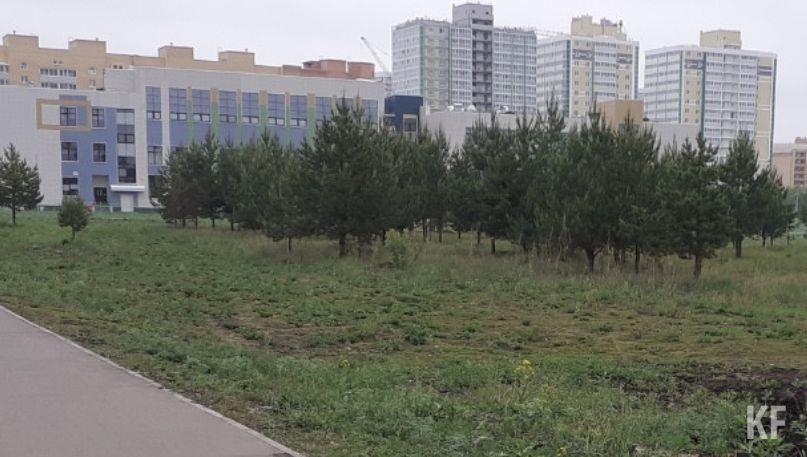 Власти Челнов поддержали идею создания сквера для инвалидов в 65-м микрорайоне