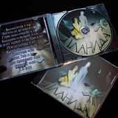 Диск с альбомом XII (2016)