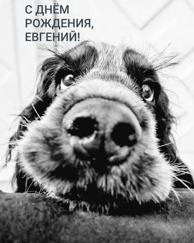 Вадим Фамилия, Петропавловск-Камчатский