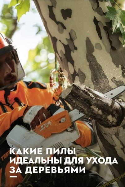 Работа в лесу и на даче — настоящее...
