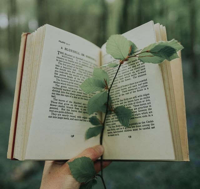 Циникам назло: 7 пронзительных книг о реальных историях большой любви