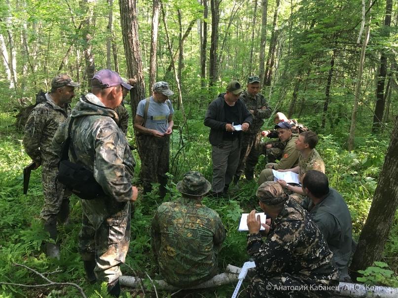 🌲 Лесные инспекторы Приморья повышают свою квалификацию по оценке лесных ресурсов
