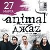 Animal ДжаZ / 27 марта 2021 / Харьков, Корова
