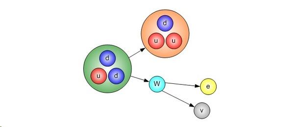 Бозоны, фермионы, кварки и другие элементарные составляющие Вселенной