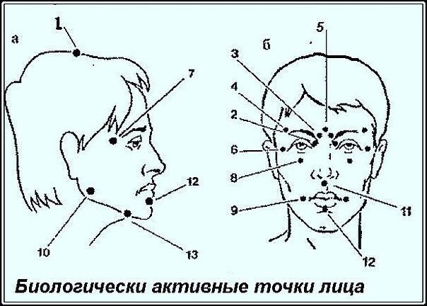 Биологически активные точки на голове — ваша скорая помощь !