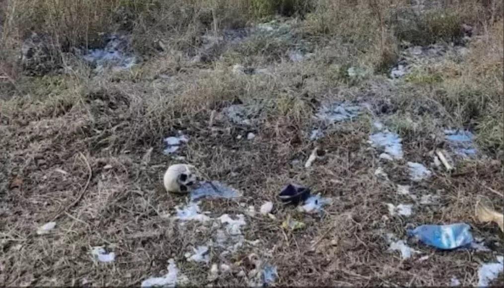 Мужчина обнаружил в Покровке ужасающую находку - человеческие череп и кости.  Они валялись в овраге за... [читать продолжение]