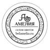 ЦВЕТЫ  Белгород | Амелия