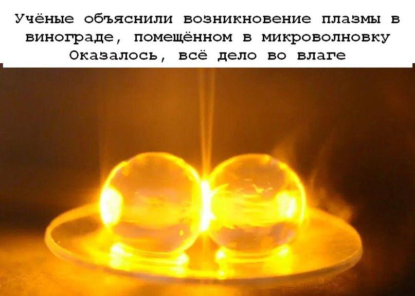 Трюк с плазмой, «извергаемой» виноградом, помещённым в микроволновку, известен д...