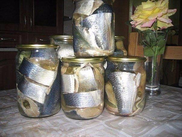 Наша семья уже давно не покупает соленую скумбрию или селедку в магазине, домашн...