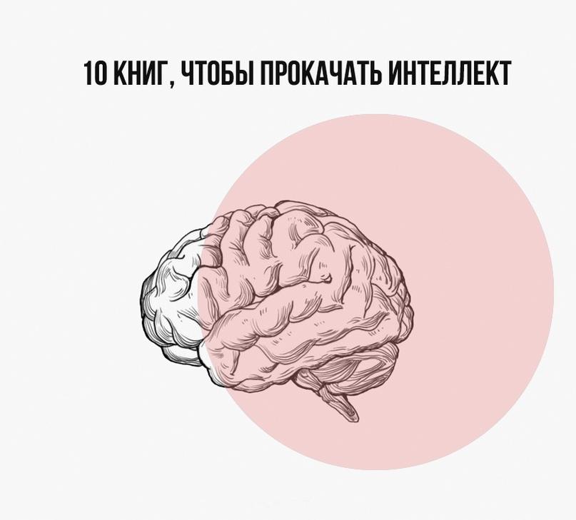 10 книг, чтобы прокачать интеллект