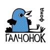 Благотворительный фонд «ГАЛЧОНОК»
