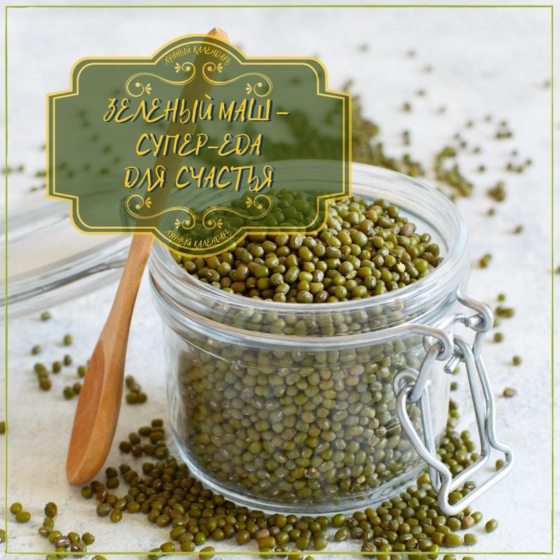 🍃 Зеленый маш – супер-еда для счастья