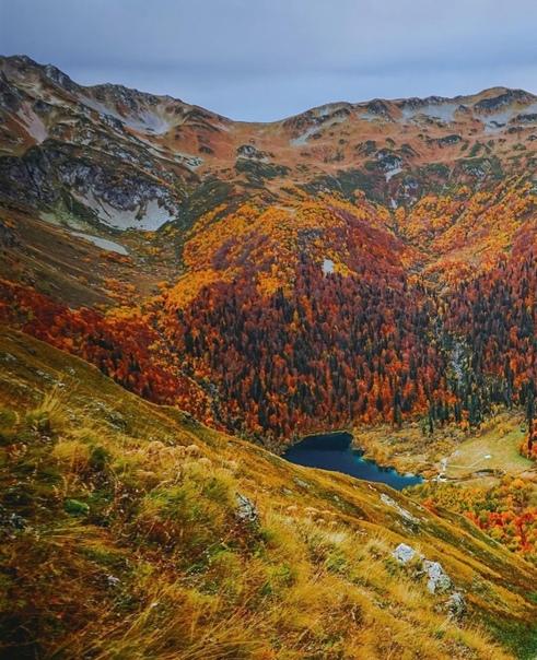 Лучше гор может быть только осень в горах ⛰️????  ???? zholobov Сочи