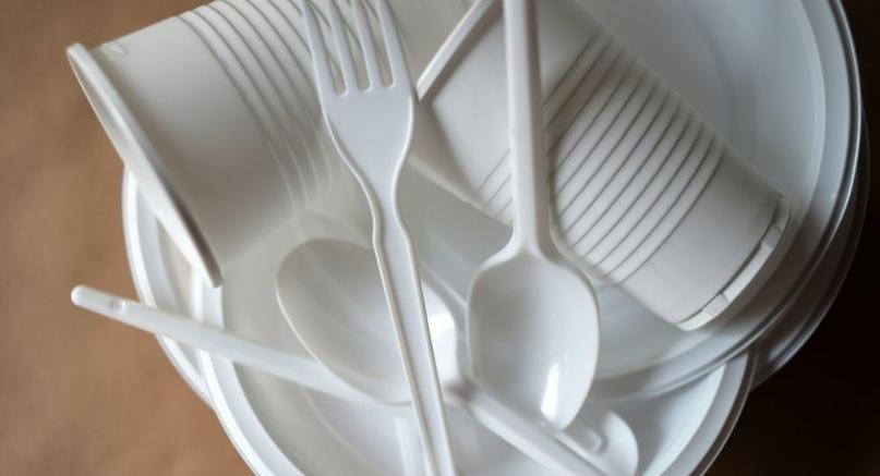 Некоторую пластиковую посуду могут вернуть в общепит.