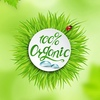 iHerb! Натуральные органические товары из США