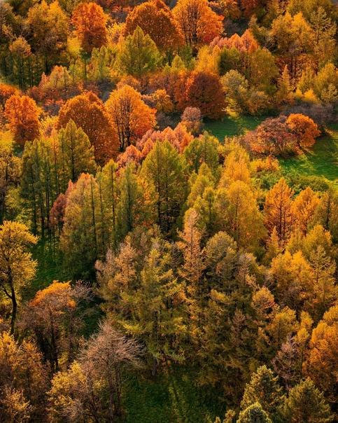 Осень в Ставрополе ???? Ставрополь