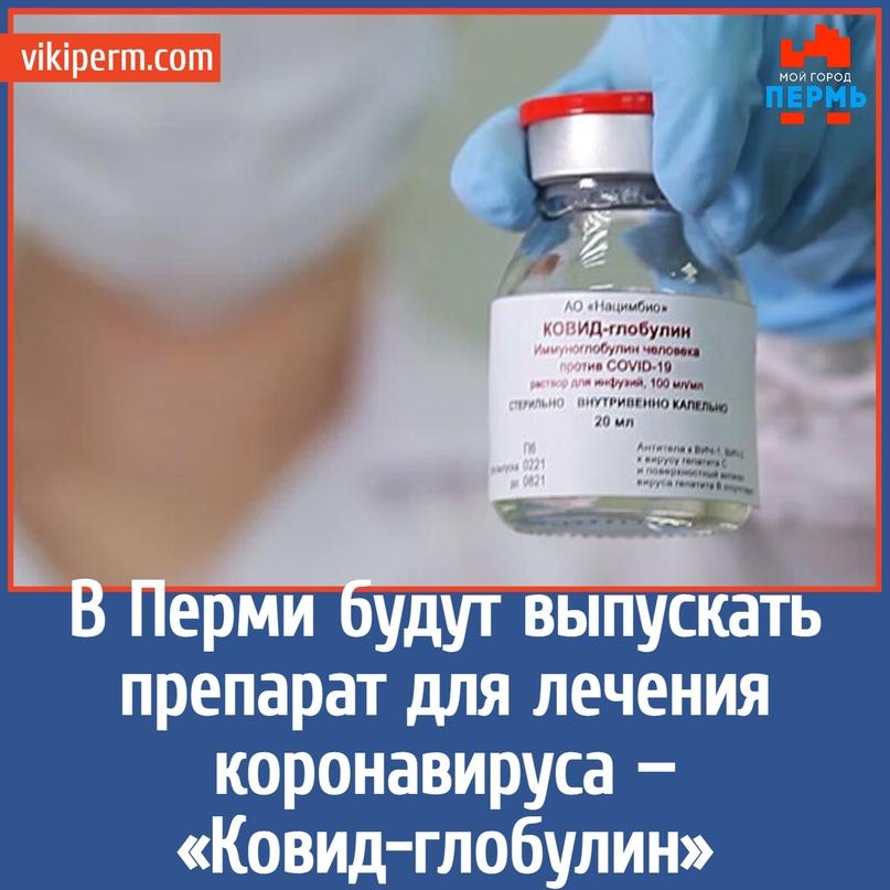 В Перми будут выпускать препарат для лечения коронавируса — «Ковид-глобулин»