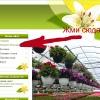 Цветы в Бийске