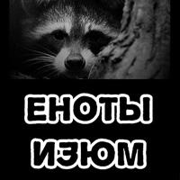 Еноты Изюм