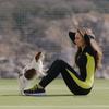 Дрессировка собак Севастополь кинолог аджилити