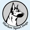 Дрессировка собак в Воронеже