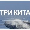 ТРИ КИТА | маркетинг в Воронеже