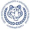 """Снежный барс"" олимпиады и конкурсы"