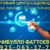 Начибулло Фаттоев 1Б-62