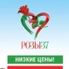 РОЗЫ37.РФ ЦВЕТЫ ТЮЛЬПАНЫ РОЗЫ В ИВАНОВО