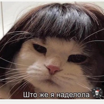 Жансая Жолдыбаева, Алматы