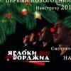 Первый Новогодний Концерт!