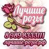 БЕСПЛАТНАЯ доставка цветов Краснодар, 101 роза