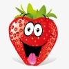 Земляника фриго, саженцы ягодных, цветы