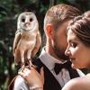 Свадебный фотограф Москва | фотограф на свадьбу