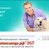 vetpomosch24