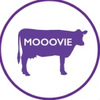 Oнлайн конструктор продающего видео Mooovie.me