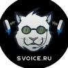 SVOICE.RU | Хостинг TeamSpeak 3/5 серверов