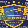 АНО ДПО «Автошкола - Профессионал Кузнецк»