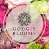Googis-Blooms Auguste-Stamulyte